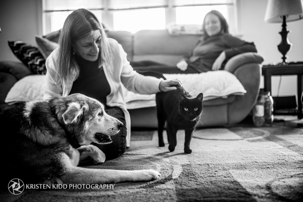 Submit your story about the impact your cat has made in your life and enter to win a Kristen Kidd Photography photo session gift certificate