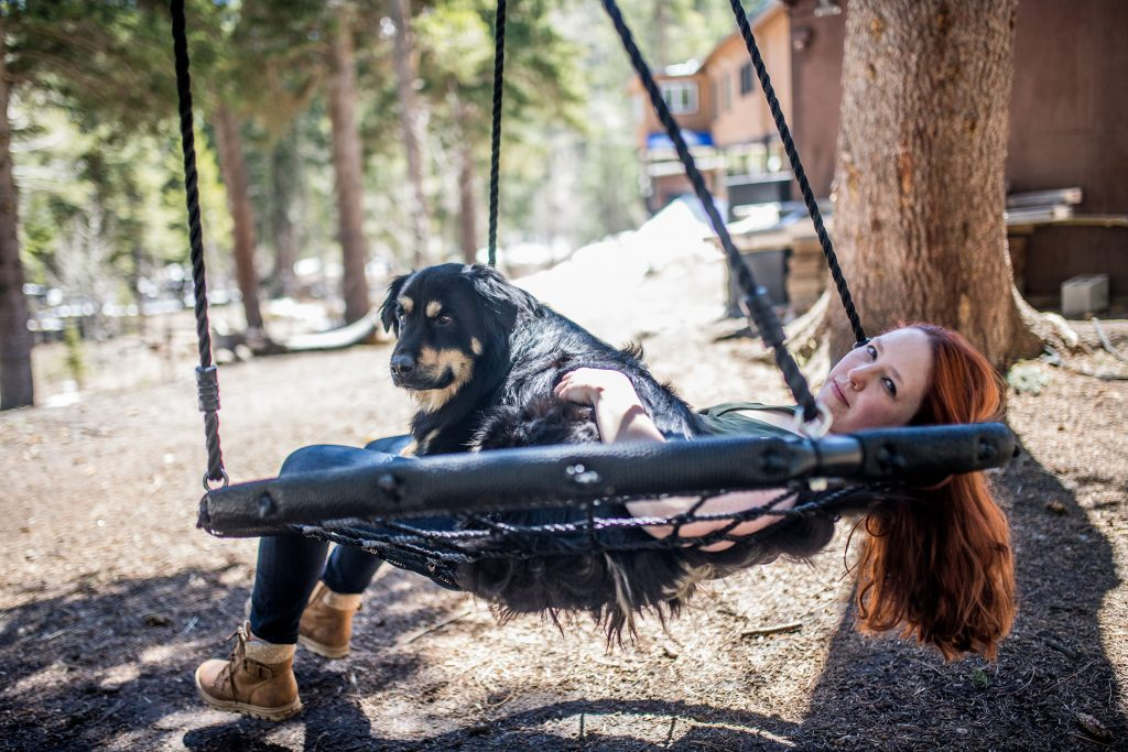 dog adventure photography with kristen kidd photography